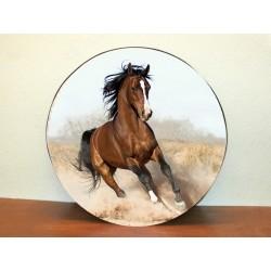 Temi Cavallo Coperchio ruota di scorta Coperchio ruota di scorta Coperchio pneumatico