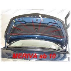 BRA Ford Galaxy